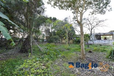 Terreno - Fazenda Velha - Ref: 8169 - V-bg80942001