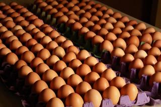 Huevo De Campo Ecologico