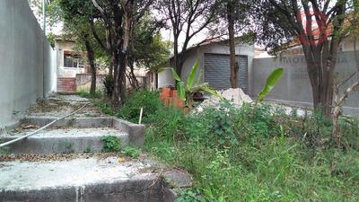 Terreno - Vila Matilde - Ref: 5230 - V-5230