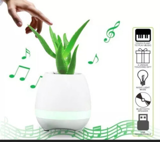 Maceta Musical. Bocina Bluetooth Musical.