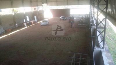 Galpao Industrial - Santa Luzia - Ref: 5002 - V-5002