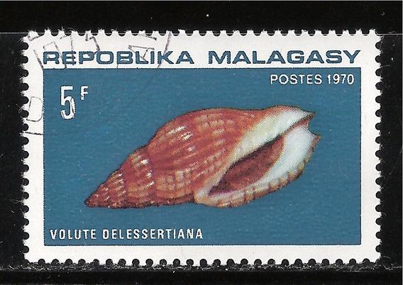 Madagascar - Voluta Delessertiana - 1970