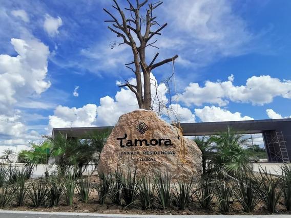 Venta Lotes Residenciales En Privada Zona Norte De Mérida Tamora