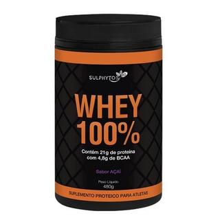 Whey 100% - Pote 480g C/bcaa 4,8g