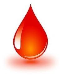 Sangre Fresca Para Morcilla (precio X 2 Litros)