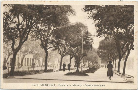 Antigua Postal Paseo De La Alameda Mendoza