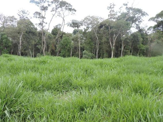 Terreno Em Granja Viana, Cotia/sp De 0m² À Venda Por R$ 360.000,00 - Te397407