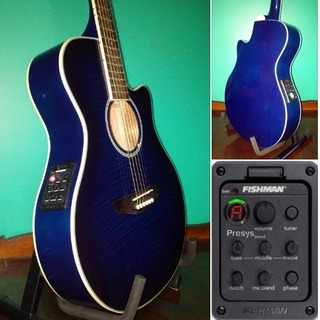 Guitarra Electroacustica Parquer Ecu Fishman 301