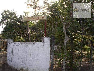 Chácara Residencial À Venda, Centro, Goiana. - Ch0001