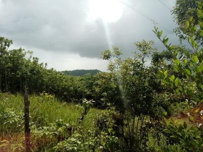 Terreno En Venta Yamasa