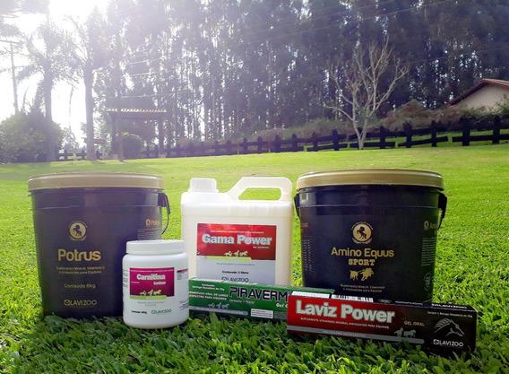 Potrus 6kg Amino Equus Sport 6kg Equinos Cavalo