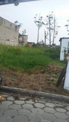 Terreno Com 280 M², No Litoral Em Mongaguá/sp