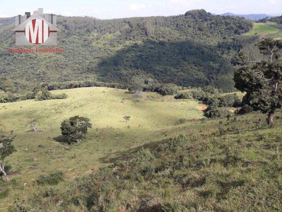 Terreno Com 22 Alqueires À Venda, 528000 M² Por R$ 1.720.000 - Pedra Bela - Pedra Bela/sp - Te0216