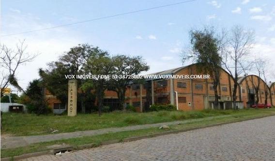 Pavilhao - Sao Joao - Ref: 49553 - L-49553