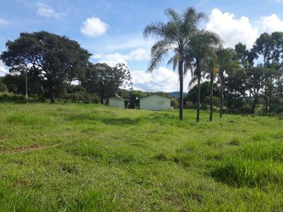Fazenda Com 16 Alqueires Em Cana E Possui Outros Alqueires Em Pasto, Região De Cajuru - Fa0032