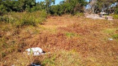 Terreno Em Itanhaém Com 260 M2, Ficando Lado Praia - 5126/pg