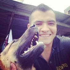Curso De Adiestramiento Canino Bogotá