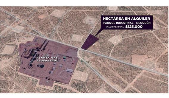 Hectárea En Alquiler, Parque Industrial Neuquen.