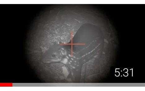 Visão Noturna Câmera Com Visão Noturna Mais Lanterna Infravermelho T20