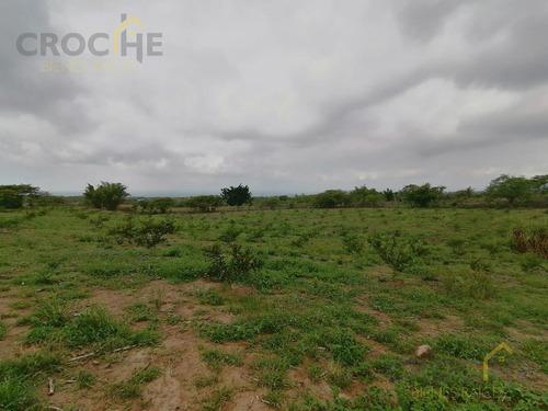 Imagen 1 de 8 de Terreno De 1.8 Hectáreas Con Producción De Limón En Tuzamapan, Coatepec, Veracruz