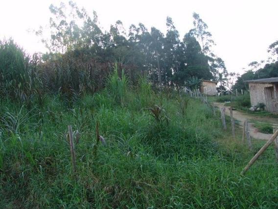 Terreno À Venda, 1200 M² Por R$ 240.000 - Forquilhas - São José/sc - Te0705
