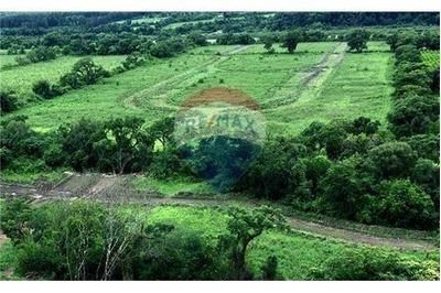 Re/max Noa Ii Vende Terreno En Barranca S.antonio
