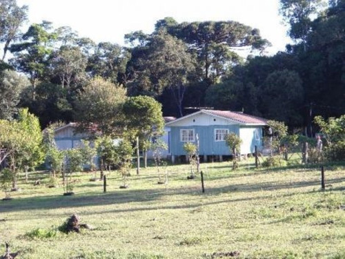 Chácara Rural À Venda, Campo Largo Da Roseira, São José Dos Pinhais - Ch0026. - Ch00119 - 34982642