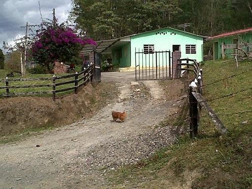 Vendo Finca En Pacho Cundinamarca De 12 Fanegadas