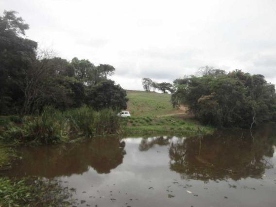 Sitio Em Artur Nogueira-sp - 1270
