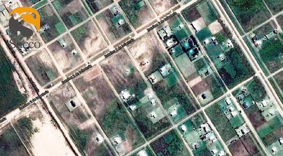 Terreno En Venta En Lomas De San Benito