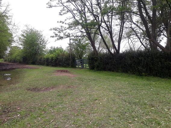 Campo En Venta Con Casa 4 Amb - 2ha