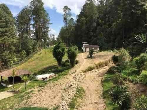 Casa Y Terreno Para Desarrollo En Cerro Gordo