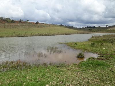 Fazenda Com 2 Quartos Para Comprar No Zona Rural Em Seritinga/mg - 346