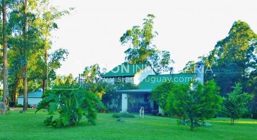 Imagen 1 de 30 de Chacra De 15 Hás Con El Confort De Hermosa Casa Reciclada, Barbacoa Y Piscina Climatizada.