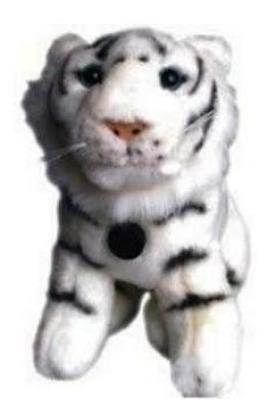 Webcam Gotec - Web White Tiger 480 - Usb