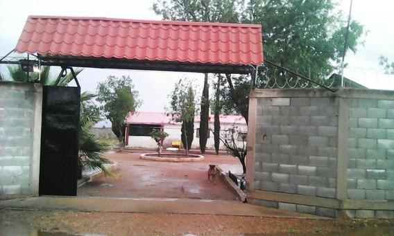 Venta Granja Valle De Chihuahua (por Siroco) 2,000,000 Alfgut