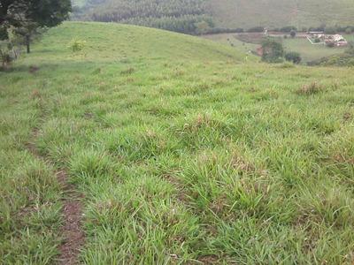 Sitio No Sul De Minas , Conceição Do Rio Verde , Perto Águas De Contendas, 10 Ha , Muito Bom De Água. - 4280