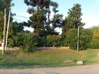 Casa Quinta 5 Ambientes Para Demoler Ideal Pyme Mayorista