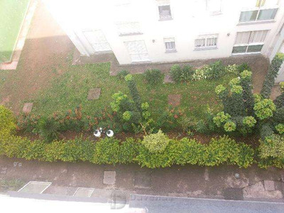 Apartamento Cdhu Cachoeirinha Sp Zn - 18472-1