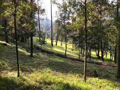 Terreno San Ramón