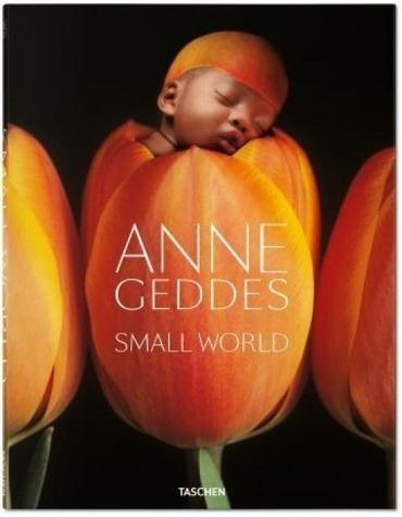 Geddes Small World  - Geddes, Anne