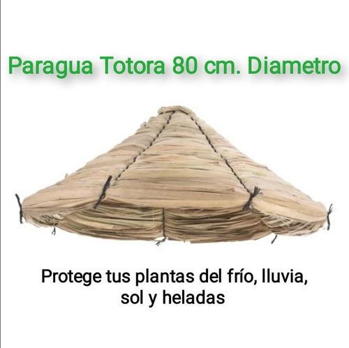Imagen 1 de 3 de Paragua De Totora