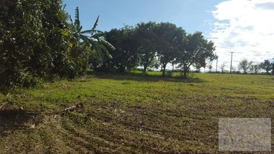 Sítio Para Venda Em Limeira, Rural - In019