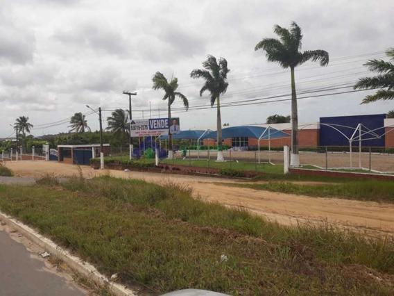 Excelente Para Logística, Faculdades, Centro Treinamento,etc. Br 101 - Beira De Pista Com 20 Ha. - 1133