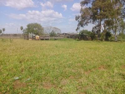Fazenda A Venda Guia Lopes Da Laguna -ms (dupla Aptidão) - 880