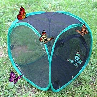 Trasfit 12pulgada Abatible Insectos Y Mariposas Hábitat Ter