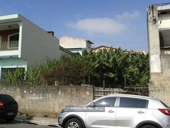 Terreno Para Galpão Em Cumbica Guarulhos-sp - 0714-1
