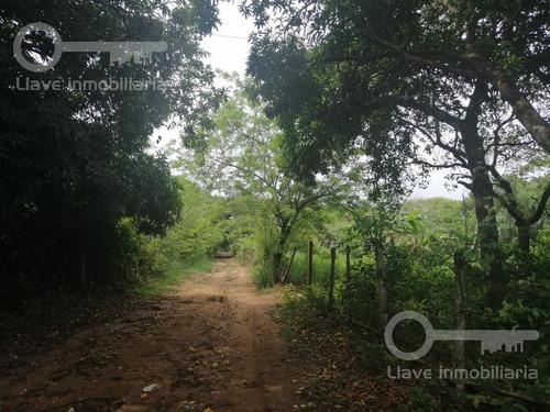 Imagen 1 de 5 de Terreno En Venta, Ejido Calzadas Cosoleacaque, Ver.