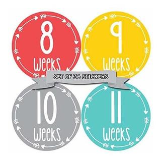 Meses En Movimiento Embarazo Weekly Belly Growth Stickers Se
