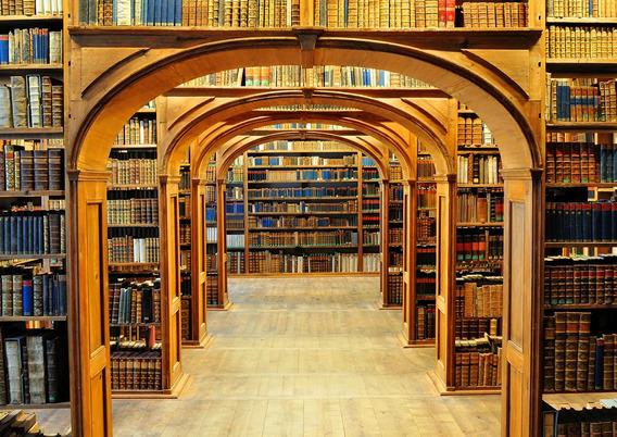 Fundo Fotográfico Tecido Sublimado Biblioteca 3x2m